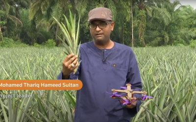 Researchers Create Eco-Friendly Drones Made of Plant Fibers